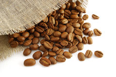 Seed of coffee Royalty Free Stock Photography