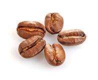 Seed coffee Stock Photo