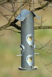 Seed feeder for wild birds Royalty Free Stock Photo