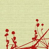 Seed heads and stems on cream woven canvas Stock Image