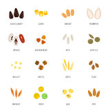 Seed Icon Flat Stock Photos