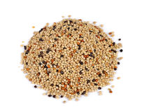 Seed mixture isolated on white background. Pet food for birds Royalty Free Stock Photos