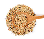Seed mixture in the wood spoon isolated on white background. Pe Royalty Free Stock Images