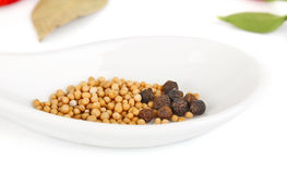Seed mustard in spoon Royalty Free Stock Photos