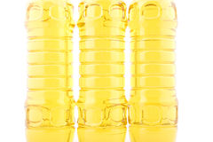 Free Seed Oil Closeup Royalty Free Stock Photography - 7253877