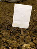 Seed Package Garden Row Marker  Stock Photos