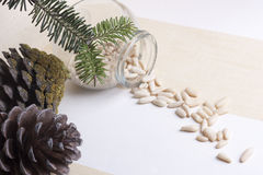 Seed pine nut Royalty Free Stock Photo