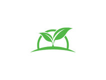 Seed plant. This logo use seed icon with circle behind it to represent sunrise. It`s suitable for company who has nature background royalty free illustration