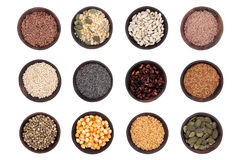 Seed Selection Stock Image