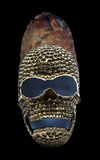 Seed skull Stock Images