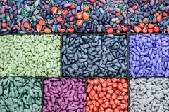 Seed sunflower seeds, corn, radishes. painted agro color for sorting and labeling royalty free stock images