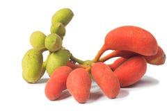 Seed of Uvaria rufa Blume fruit(Carabao teats. ), Herb rare in east of Thailand Stock Photo
