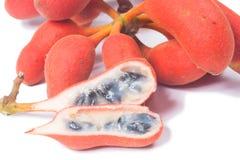 Seed of Uvaria rufa Blume fruit(Carabao teats Stock Images