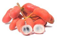 Seed of Uvaria rufa Blume fruit(Carabao teats Royalty Free Stock Photography
