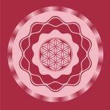 Seed wheel optical illusion  print Royalty Free Stock Photos