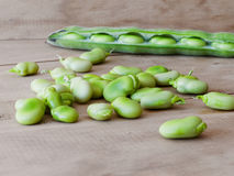 Seedcase lima beans. Royalty Free Stock Photography