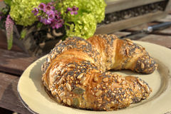 Seeded Croissant Stock Images