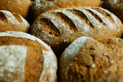Seeded spelt loaves with honey. Stock Photos