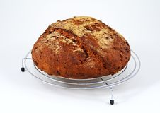 Seeded Wholemeal bread. Stock Photography