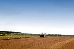 Seeding Stock Images