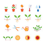 Seeding - planting instructions steps, pruning shears, watering icons set Royalty Free Stock Photos