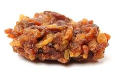 Seedless golden raisins Stock Image