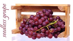 Seedless grapes. Fresh red grapes falling out standing crate isolated on white Stock Photos