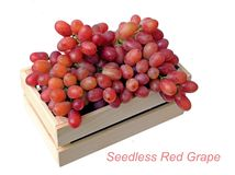 Seedless Red Grapes Royalty Free Stock Photography