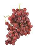 Seedless red grapes. A large bunch of fresh and juicy red grapes against a white background Royalty Free Stock Photos