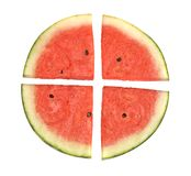 Seedless watermelon slices Stock Images