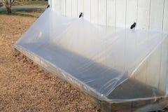Seedling Greenhouse Stock Image