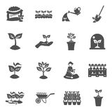 Seedling Icons Set Stock Images