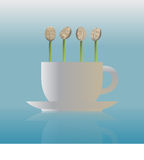 Seedlings on the coffee cup. Stock Photo