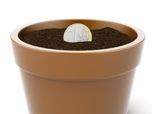 Seedlings on a euro coin vector illustration