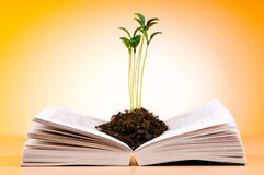 Seedlings growing from book - knowledge concept stock photography