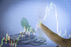 Seedlings growing from the coin stacks candlestick graph backgro. Und , Business and financial concept Stock Photos