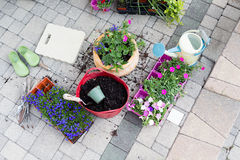 Seedlings, potting soil and flowerpots on a patio Royalty Free Stock Images