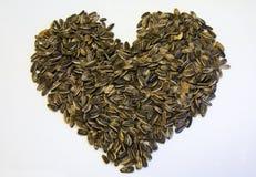 Seeds stock image
