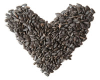 Seeds Royalty Free Stock Photos