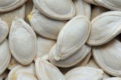 seeds Stockbilder