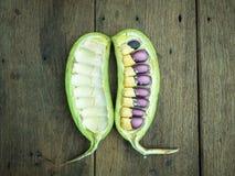 seeds Lizenzfreie Stockbilder