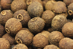 Seeds of allspice in a wooden bowl Royalty Free Stock Image
