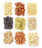 Seeds And Nuts Collection Stock Images