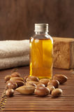 Seeds of argan with light and soap Stock Image
