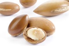 Seeds of argan on white,a close up Stock Photos