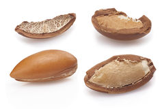 Seeds of argan on white,a close up on white background Stock Images