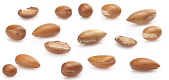 Seeds of argan on white,a close up on white background Stock Photos