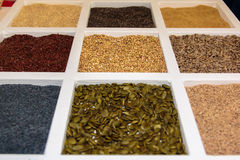 Seeds Assortments inside White Squared Compartment Stock Photos