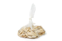 Seeds in a bag Royalty Free Stock Photography