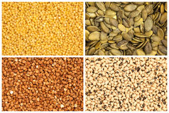 Seeds and beans Stock Images